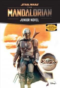 The Mandalorian : junior novel by Schreiber, Joe